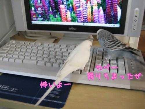 パソコン①