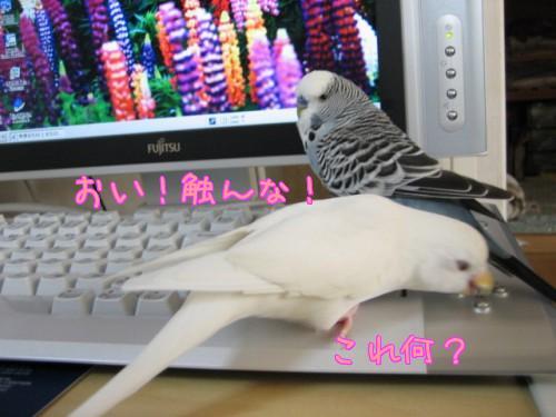 パソコン③