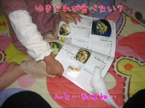 本を見る①