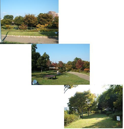 2008_0923画像0317-1