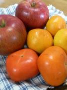 鹿角リンゴ