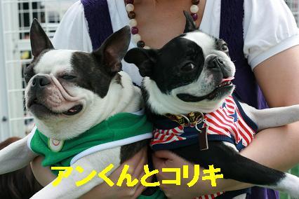 2ショット(アン・コリキ)