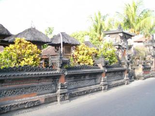 バリの家の壁