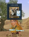 02-ワオキツネザル