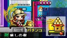Maple-ss10.jpg