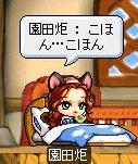 Maple-ss2_20090829132643.jpg