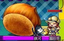 Maple-ss8_20091030162723.jpg