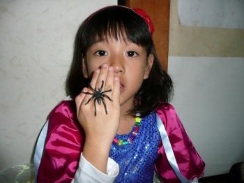 蜘蛛の指輪・・・