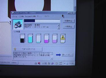 紫くま 1-1