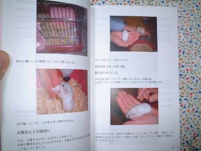 book 20080318_11