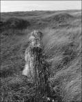 Cartier-RobertAdams-03G.jpg