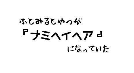 DSC_shiroA.jpg