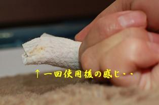DSC_0800.jpg