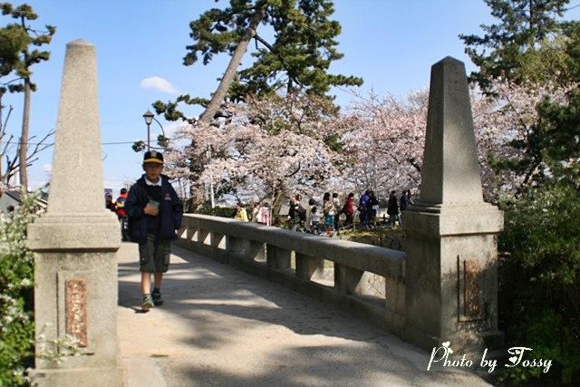 こほろぎ橋2