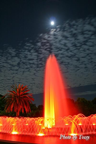 赤い噴水2