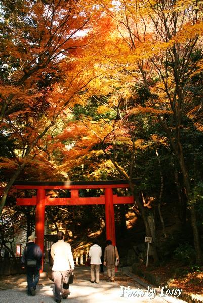 吉田神社鳥居