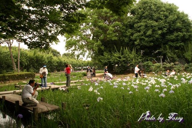 園内風景4