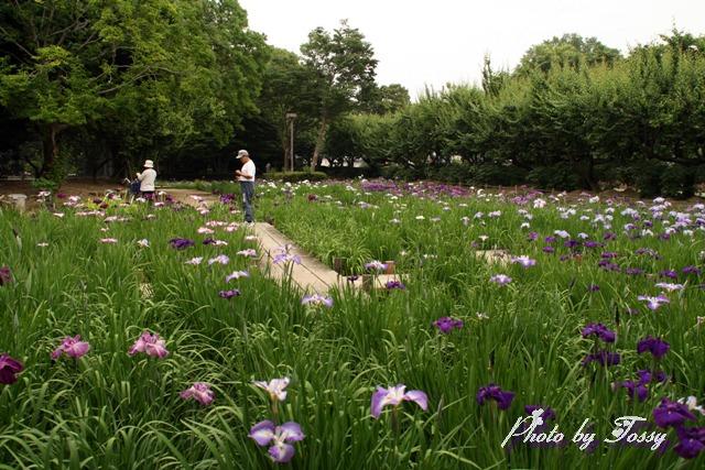 田能農業公園園内風景
