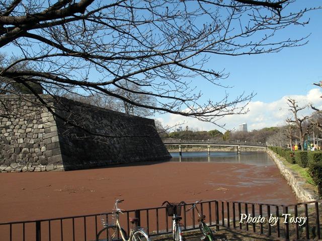 大阪城赤い内堀