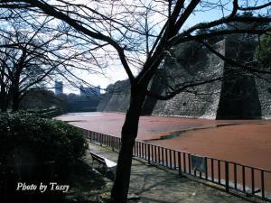 大阪城堀2009年