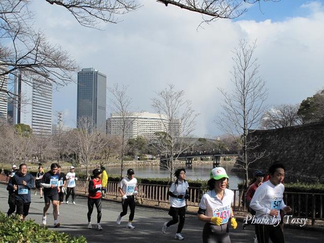 ハーフマラソンを走る人たち