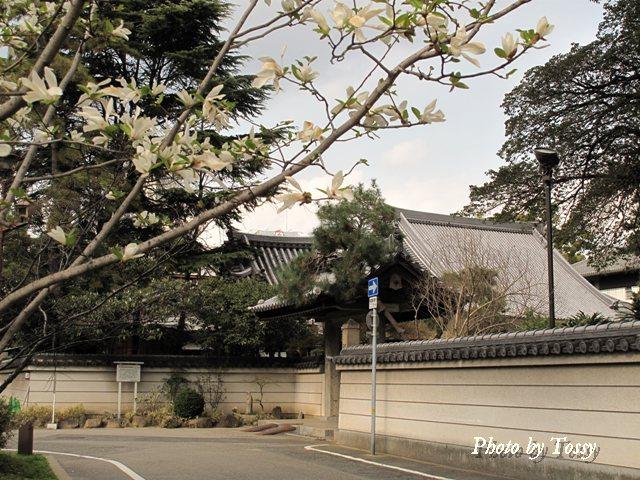 海清寺 塀と門