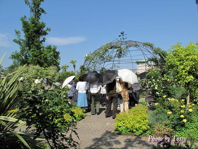 庭園ガイドツアー
