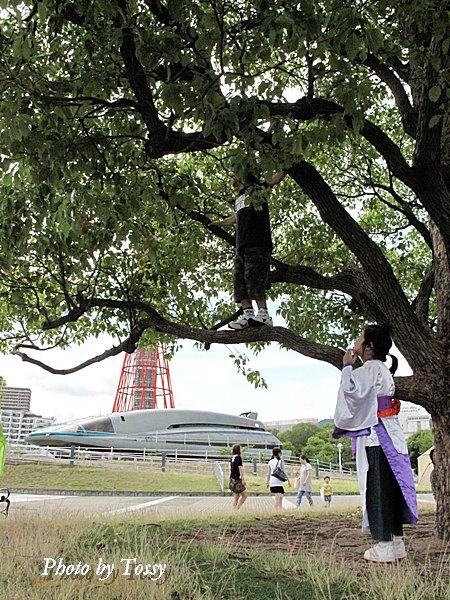 木登りをする子供