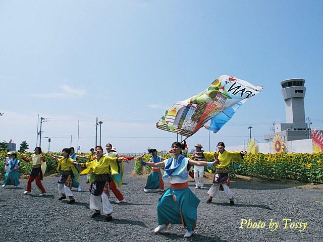 ひまわり畑の颯爽JAPAN