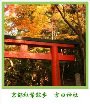 アルバム 吉田神社