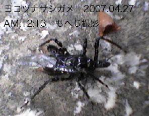 2008-12-03-09.jpg