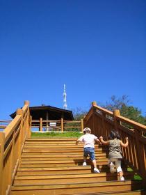 階段階段っ!