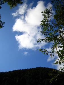 おいしそうな雲