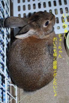 DSC_0002_20081201214650.jpg