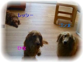 _2008_0705友達♪0010
