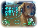 _2008_0706sora0001.jpg