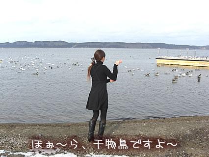 小川原湖 干物鳥