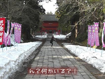 岩木山神社 干物女(江頭ポーズ)-1
