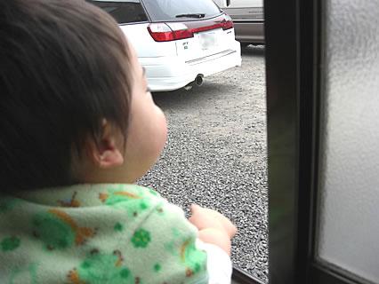 甥っ子様 窓辺