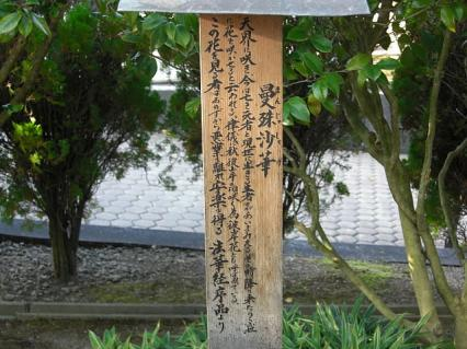 重要文化財 最勝院 曼珠沙華の説明