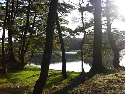 野木和公園 野木和湖