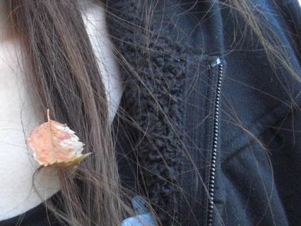 野木和公園 髪の毛についた落ち葉