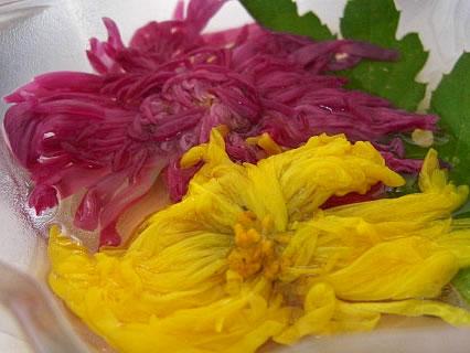 お食事処 咲さく 定食の菊の花