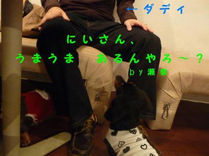 コピー ~ P1170700