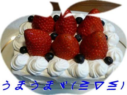 コピー ~ P1190130