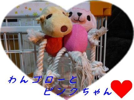 コピー ~ P1190166