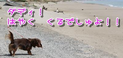 コピー ~ IMG_0198