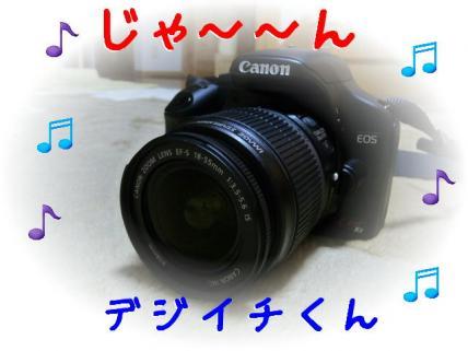 P1180827.jpg