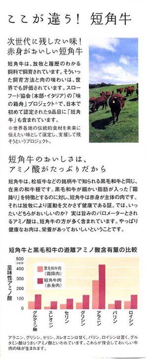 H2005229短角牛