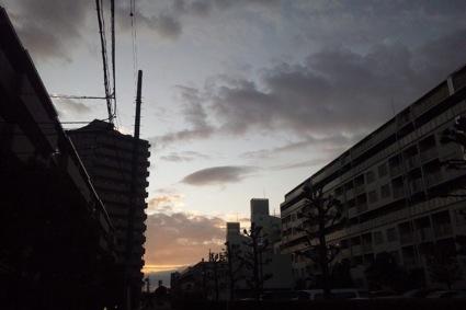 20111107.jpg